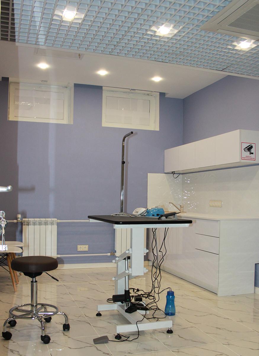 Ультразвуковая чистка зубов (фото)
